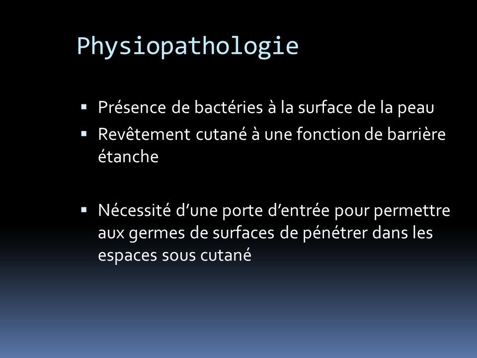 Physiopathologie Présence de bactéries à la surface de la peau