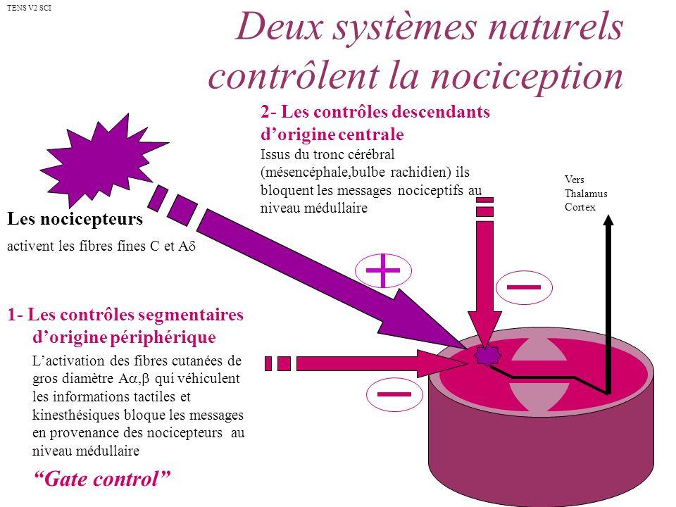 Deux systèmes naturels contrôlent la nociception