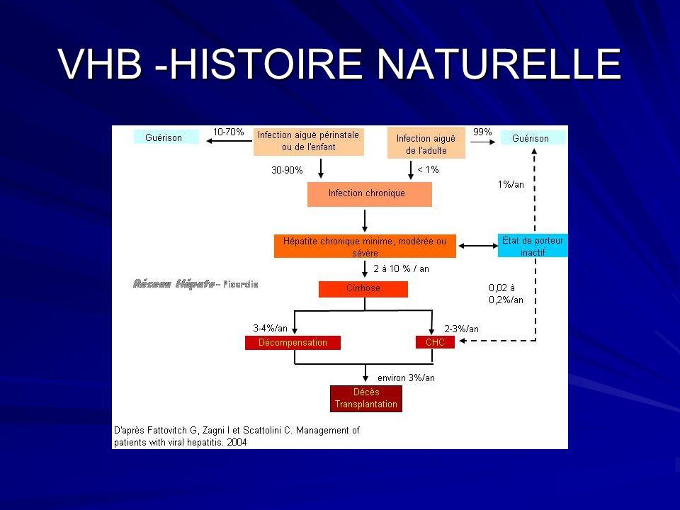 VHB -HISTOIRE NATURELLE
