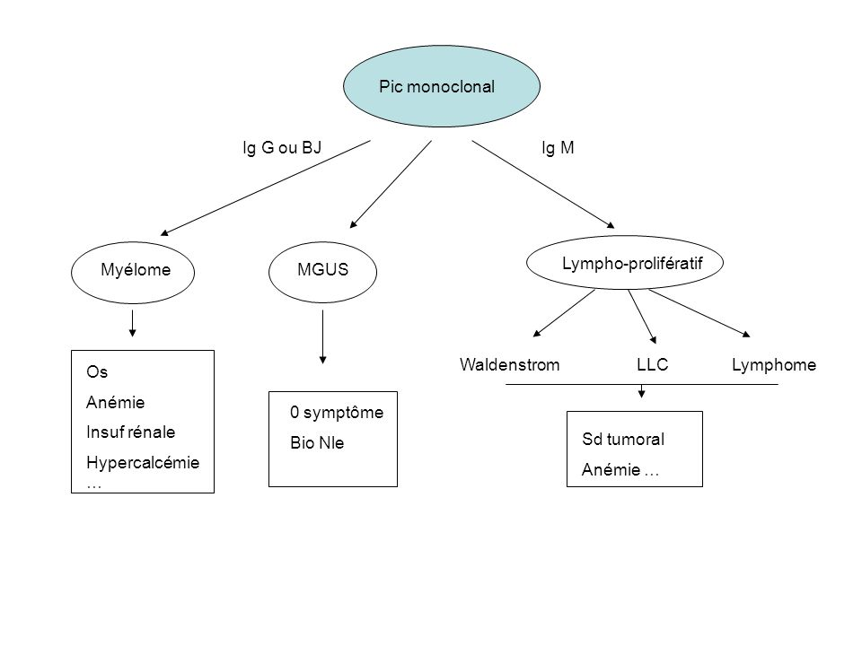 Pic monoclonal Ig G ou BJ. Ig M. Lympho-prolifératif. Myélome. MGUS. Waldenstrom. LLC. Lymphome.