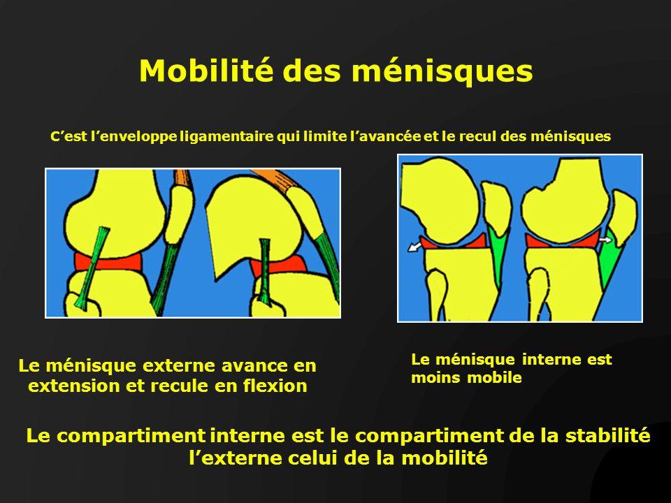 Mobilité des ménisques