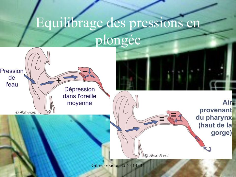 Equilibrage des pressions en plongée