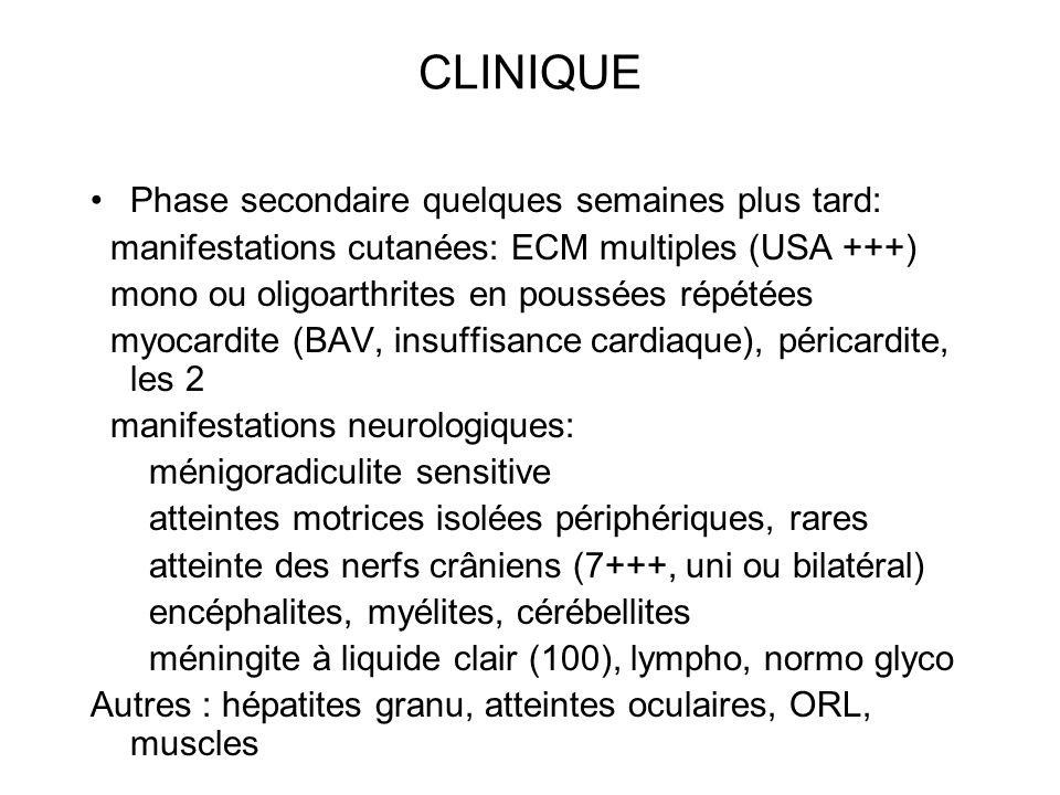 CLINIQUE Phase secondaire quelques semaines plus tard: