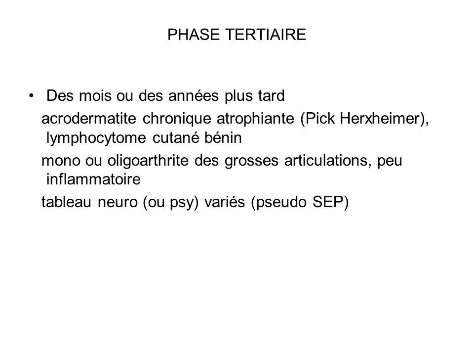 PHASE TERTIAIRE Des mois ou des années plus tard. acrodermatite chronique atrophiante (Pick Herxheimer), lymphocytome cutané bénin.