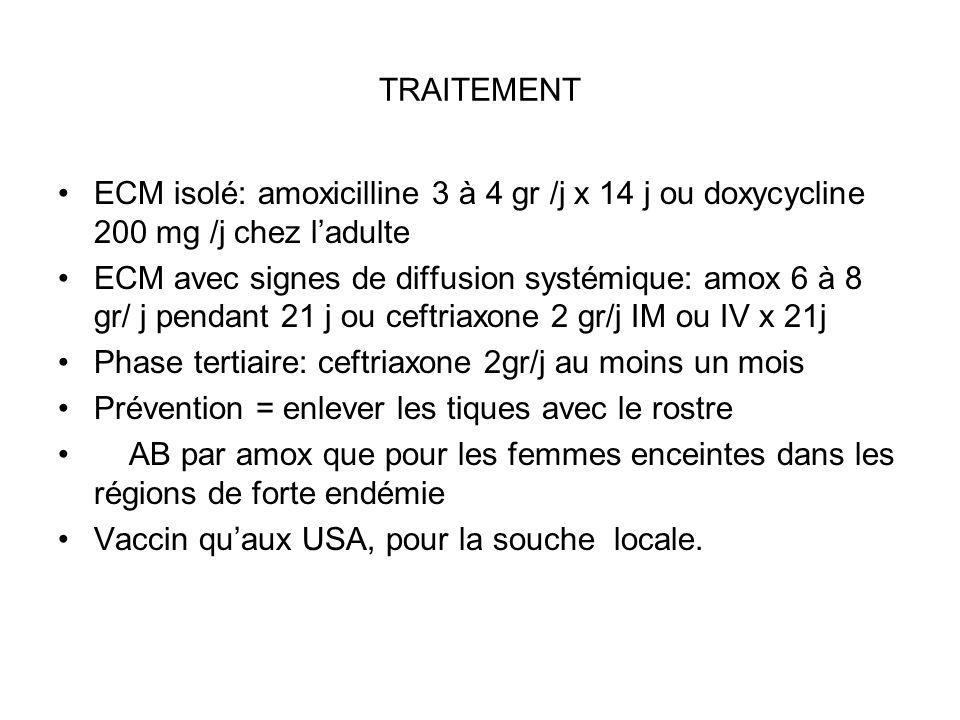 TRAITEMENT ECM isolé: amoxicilline 3 à 4 gr /j x 14 j ou doxycycline 200 mg /j chez l'adulte.