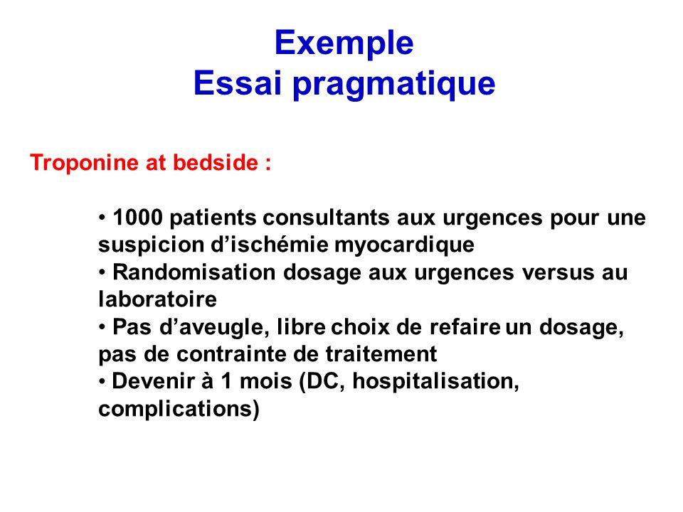 Exemple Essai pragmatique