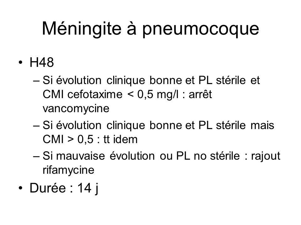 Méningite à pneumocoque