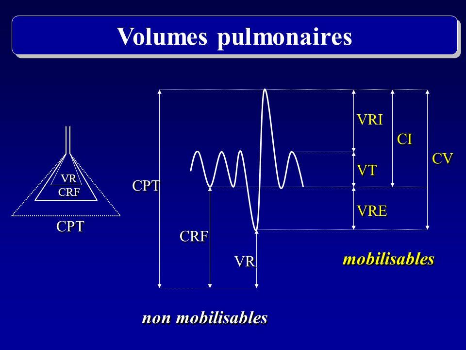 Volumes pulmonaires mobilisables non mobilisables VRI CI CV VT CPT VRE