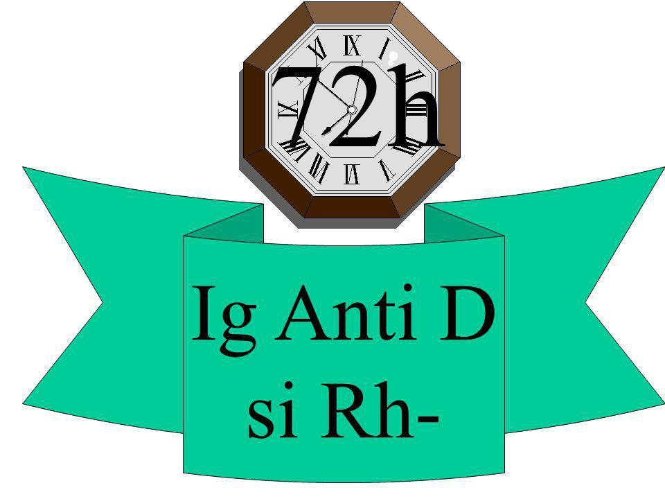 72h Ig Anti D si Rh-
