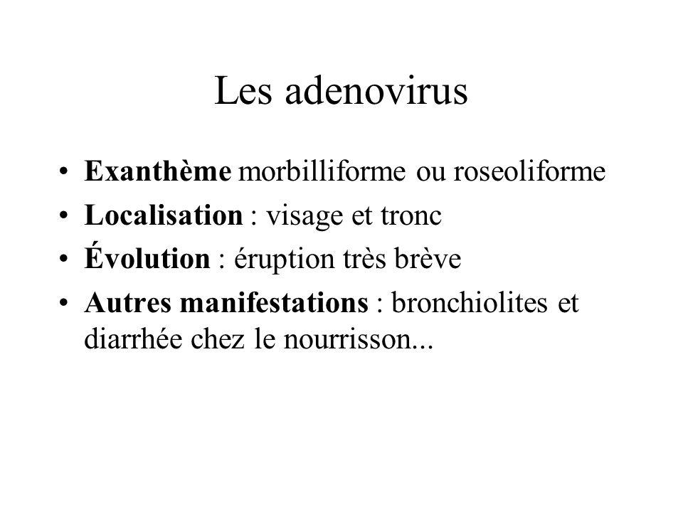 Les adenovirus Exanthème morbilliforme ou roseoliforme