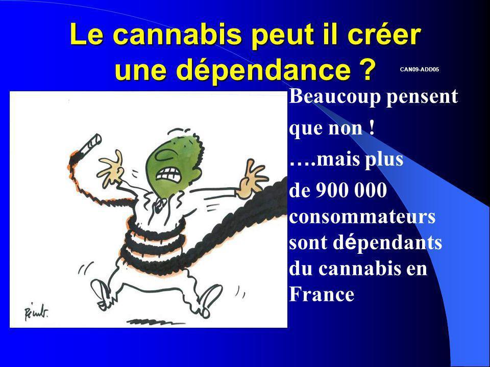 Le cannabis peut il créer une dépendance