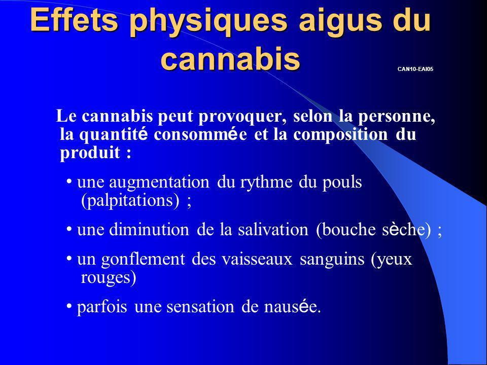 Effets physiques aigus du cannabis