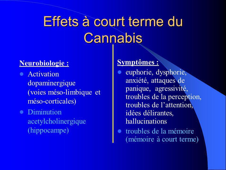 Effets à court terme du Cannabis