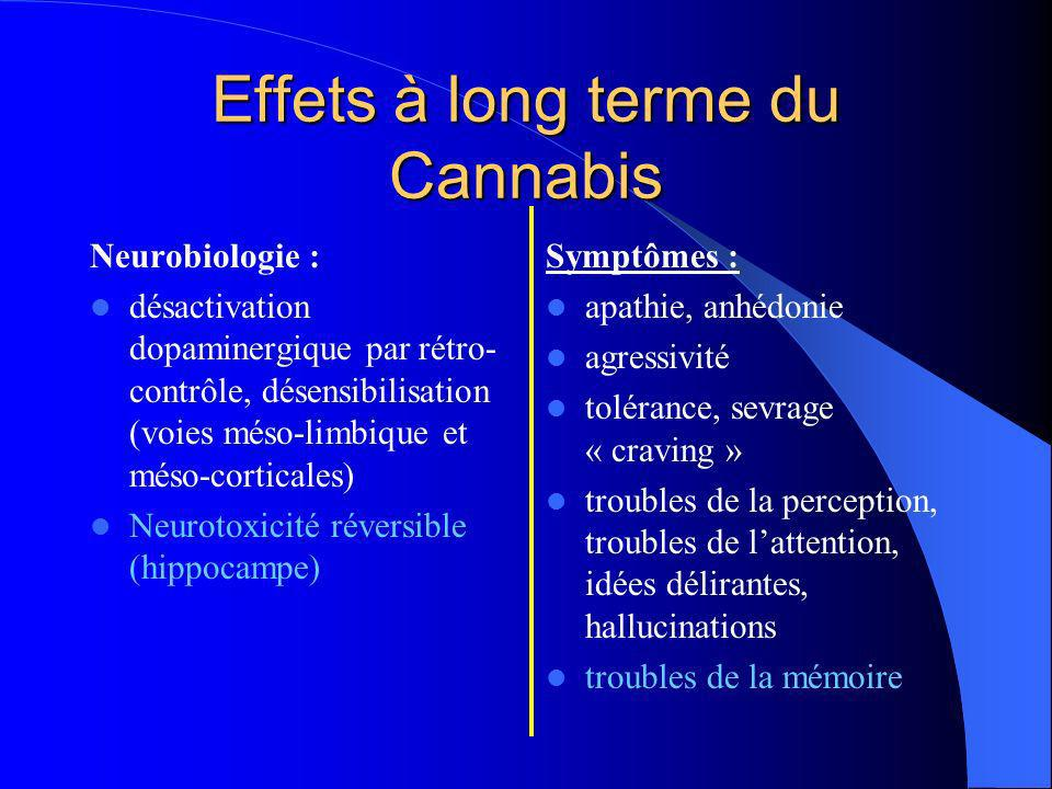 Effets à long terme du Cannabis