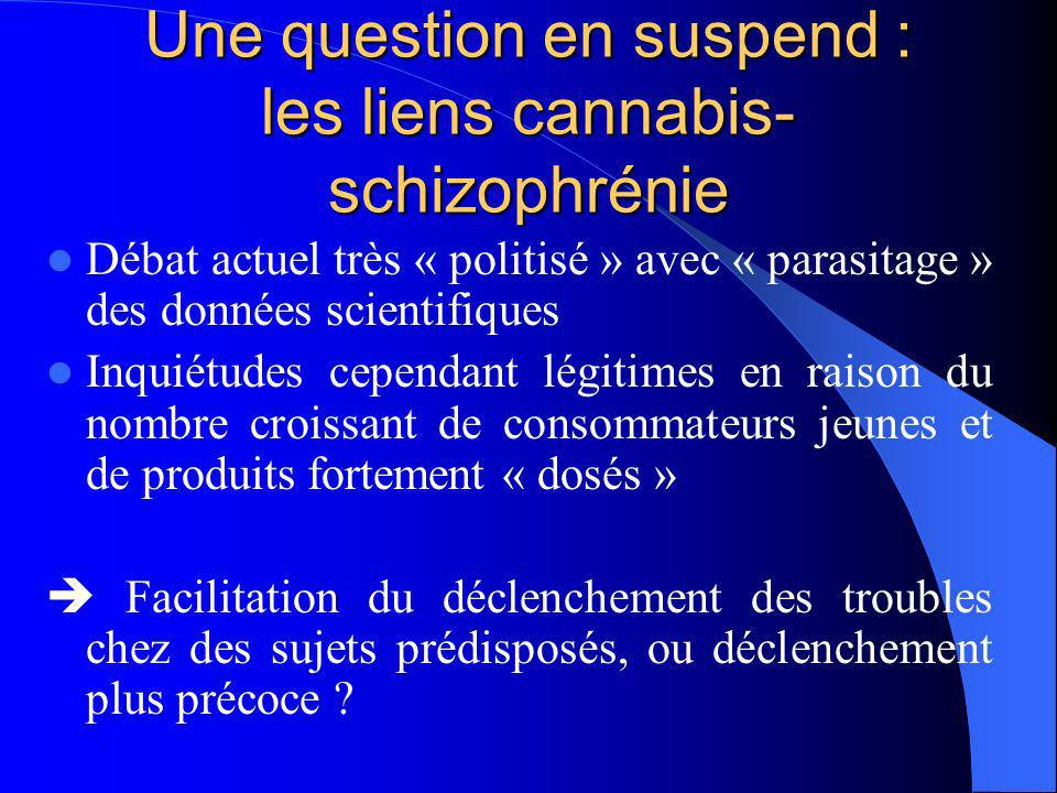Une question en suspend : les liens cannabis-schizophrénie