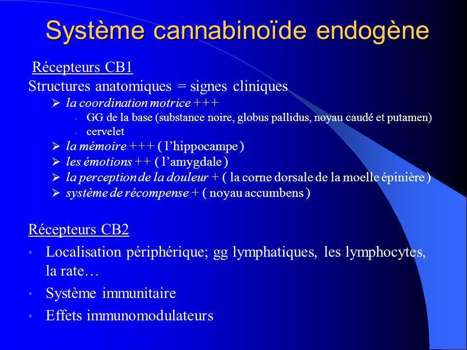 Système cannabinoïde endogène