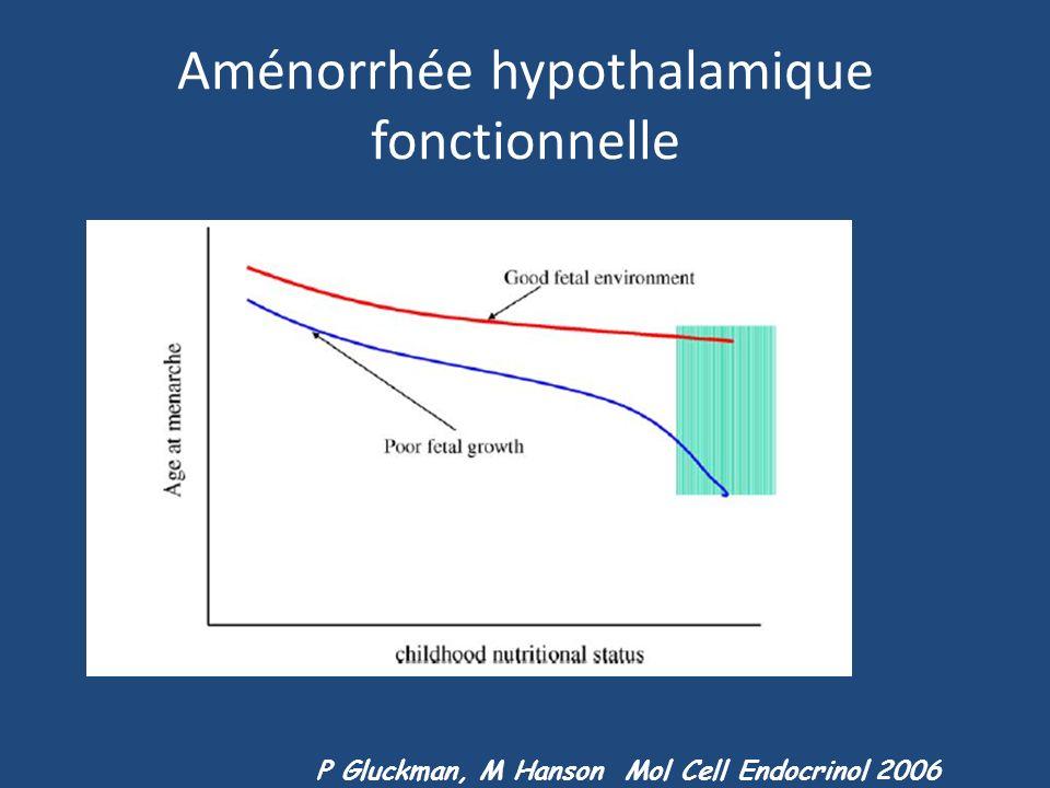 Aménorrhée hypothalamique fonctionnelle