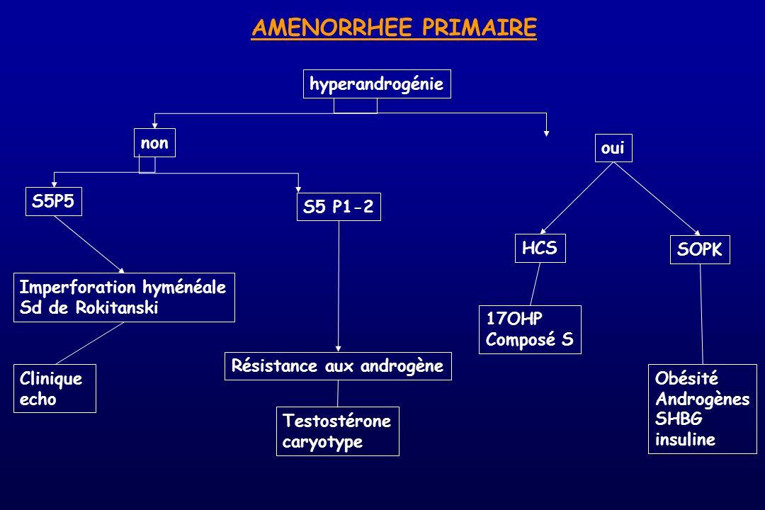 AMENORRHEE PRIMAIRE hyperandrogénie non oui S5P5 S5 P1-2 HCS SOPK