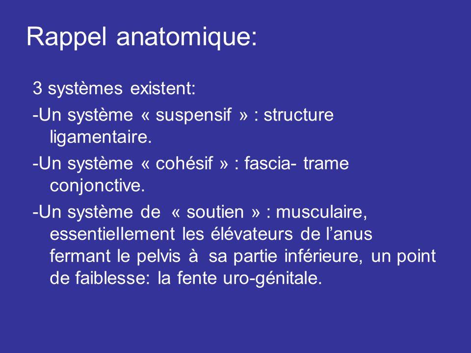 Rappel anatomique: 3 systèmes existent: