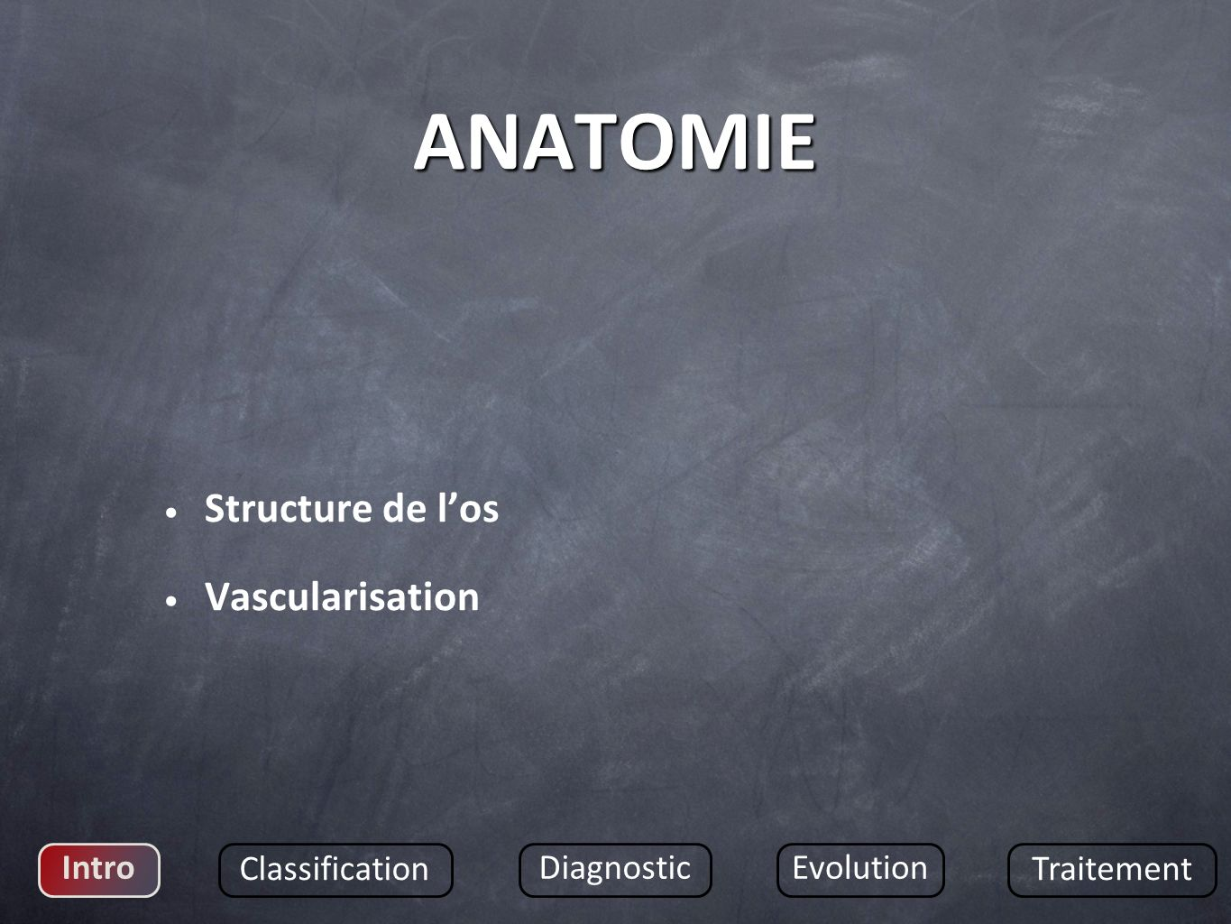 ANATOMIE Structure de l'os Vascularisation Intro Classification