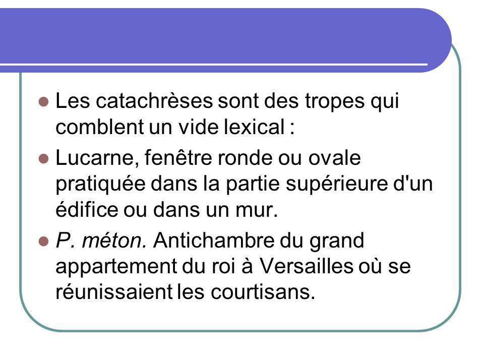 Les catachrèses sont des tropes qui comblent un vide lexical :