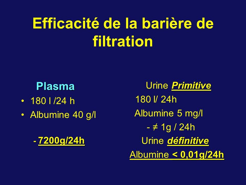 Efficacité de la barière de filtration