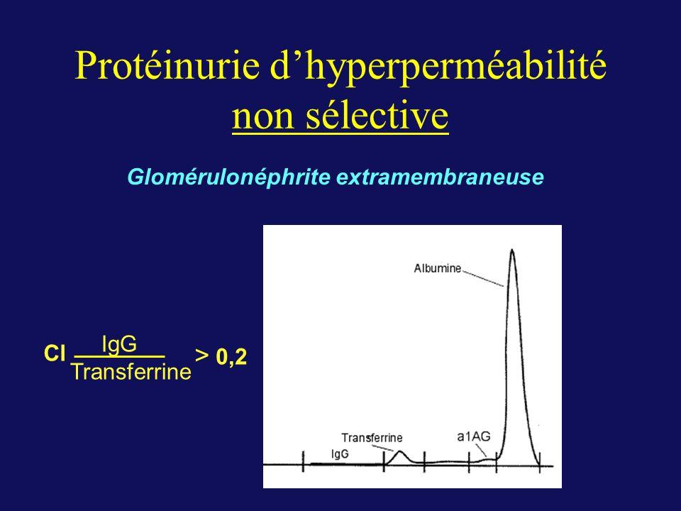 Protéinurie d'hyperperméabilité non sélective