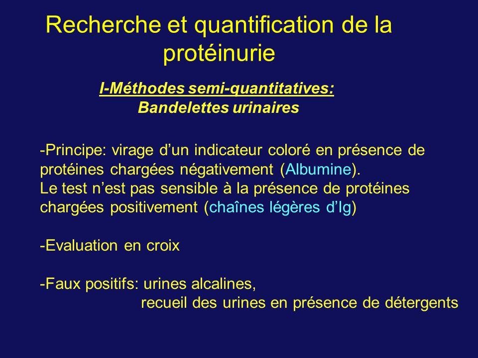 Recherche et quantification de la protéinurie