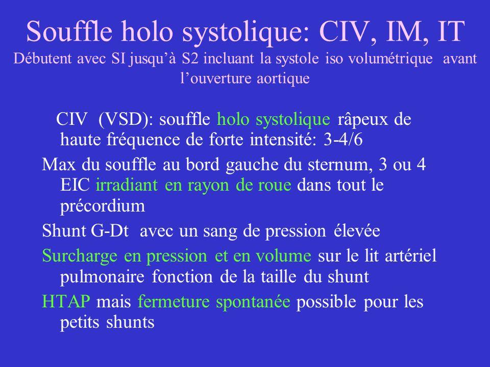 Souffle holo systolique: CIV, IM, IT Débutent avec SI jusqu'à S2 incluant la systole iso volumétrique avant l'ouverture aortique