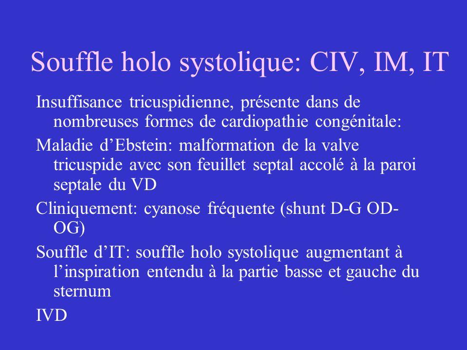 Souffle holo systolique: CIV, IM, IT