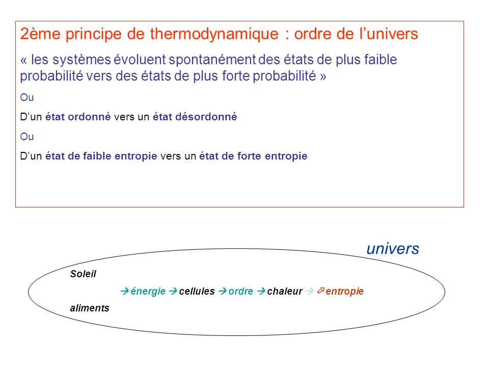 2ème principe de thermodynamique : ordre de l'univers