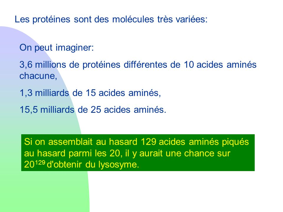 Les protéines sont des molécules très variées: