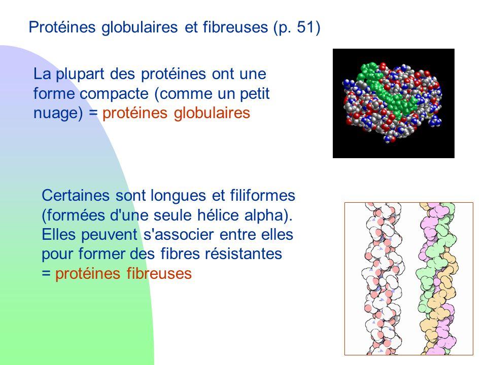 Protéines globulaires et fibreuses (p. 51)