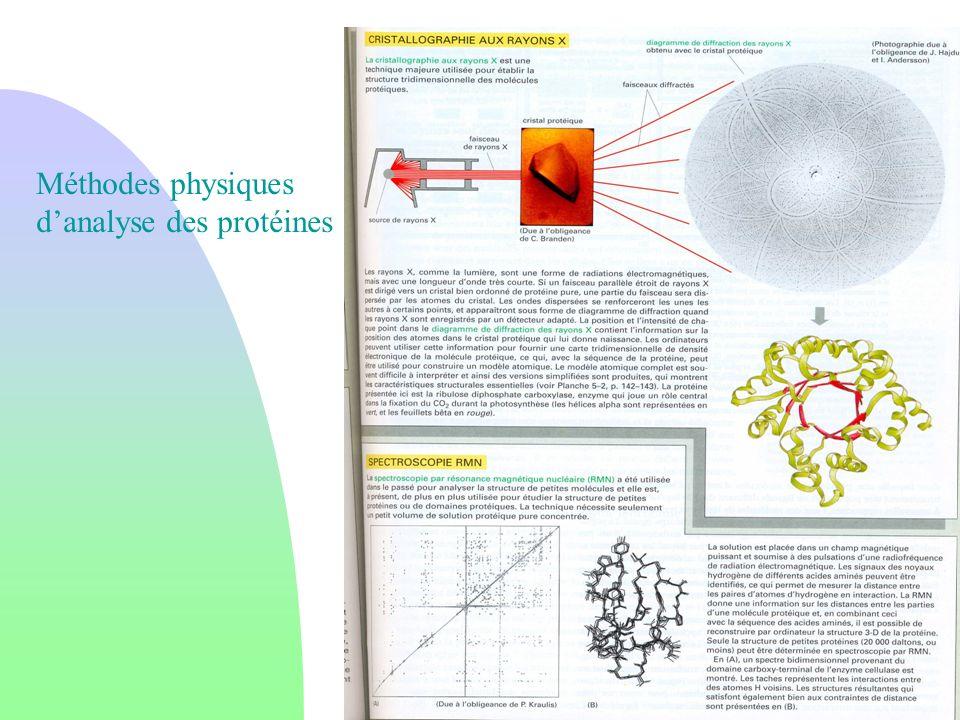 Méthodes physiques d'analyse des protéines