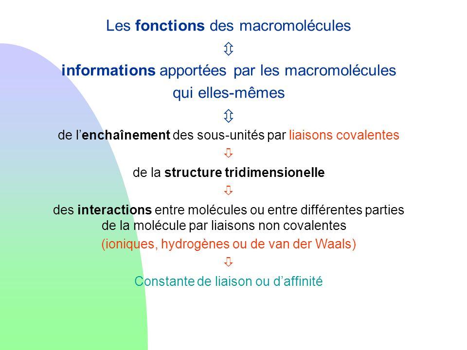 Les fonctions des macromolécules 