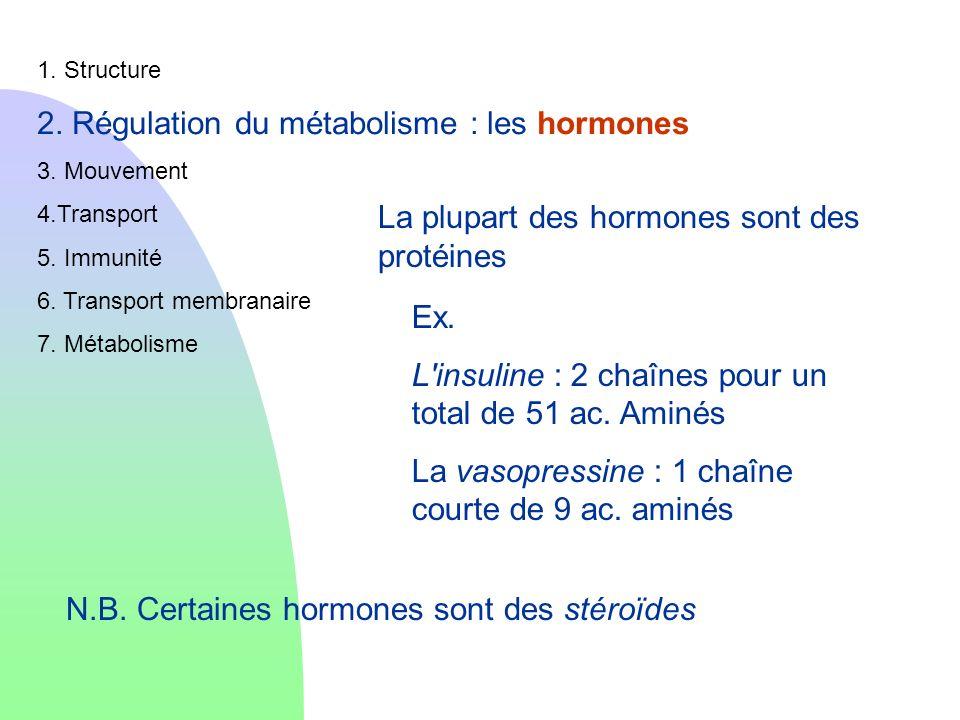 2. Régulation du métabolisme : les hormones