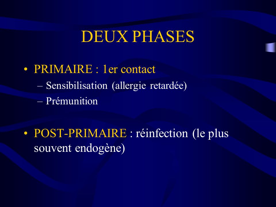 DEUX PHASES PRIMAIRE : 1er contact