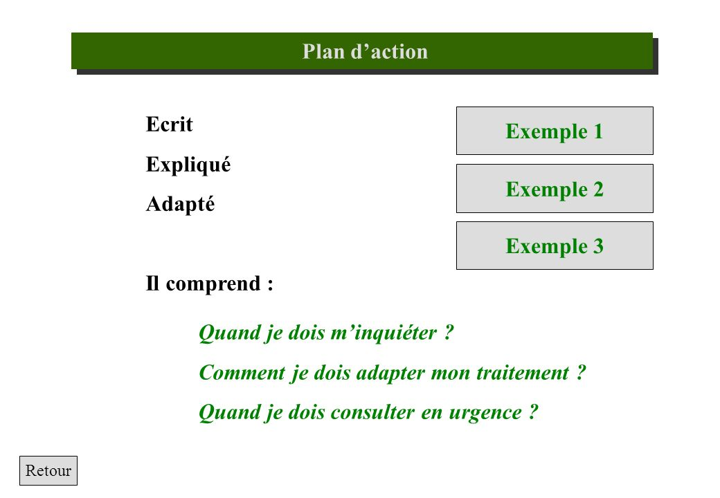 Plan d'action Exemple 1 Exemple 2 Exemple 3