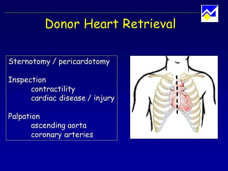 Donor Heart Retrieval Sternotomy / pericardotomy Inspection