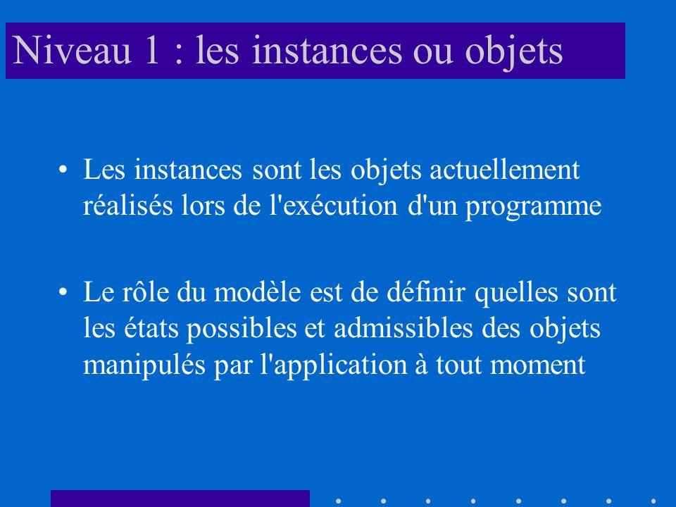 Niveau 1 : les instances ou objets