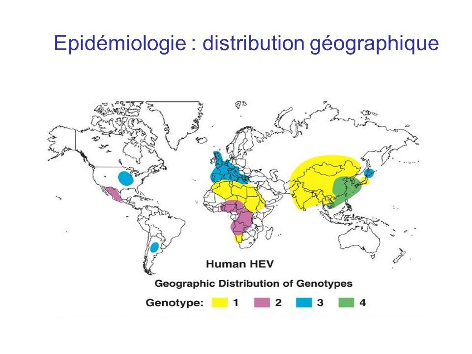 Epidémiologie : distribution géographique