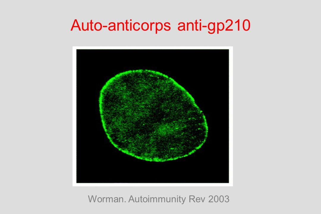 Auto-anticorps anti-gp210