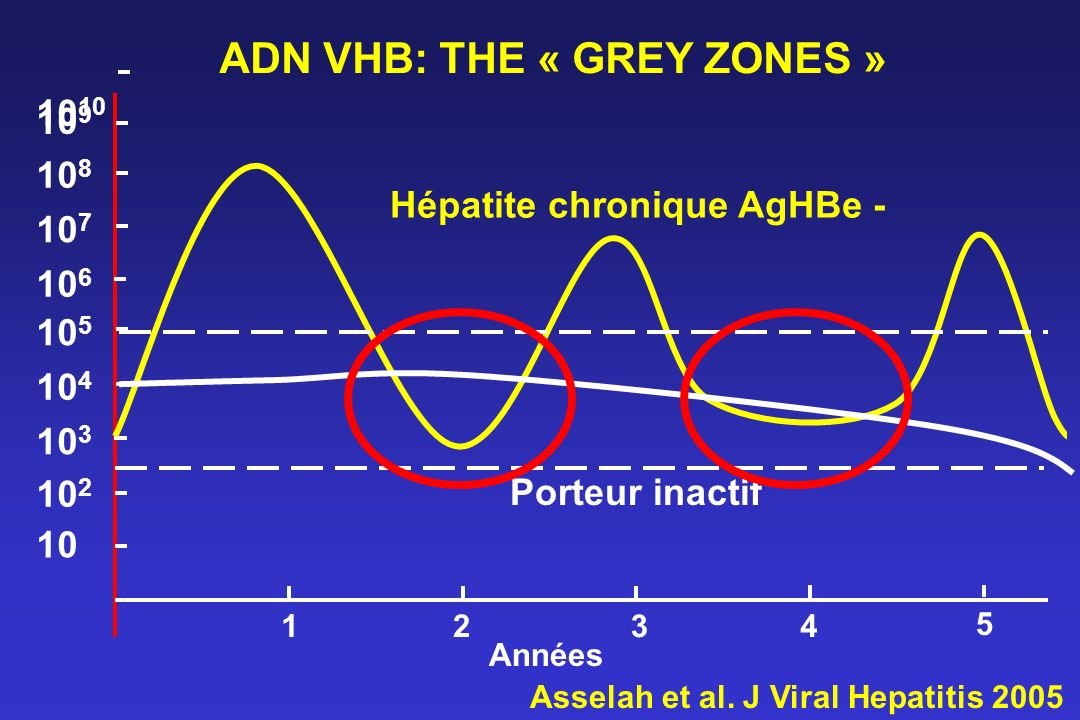 ADN VHB: THE « GREY ZONES »
