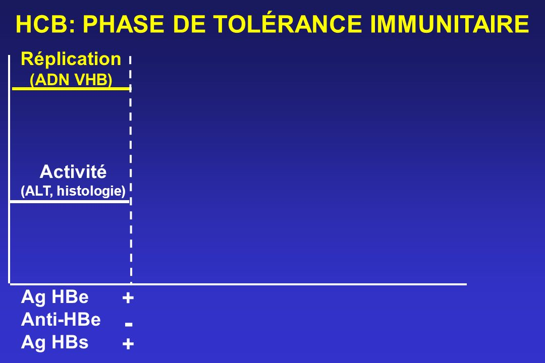 HCB: PHASE DE TOLÉRANCE IMMUNITAIRE