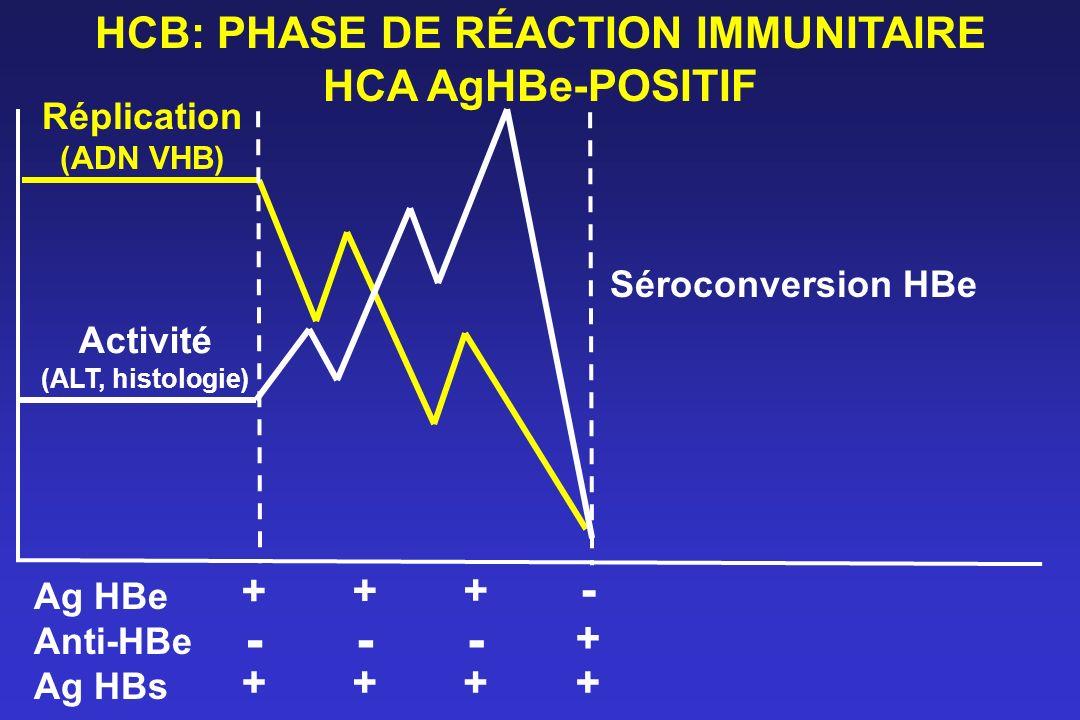 HCB: PHASE DE RÉACTION IMMUNITAIRE