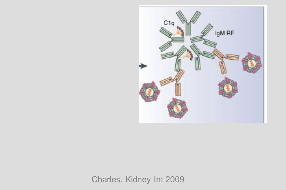 Charles. Kidney Int 2009