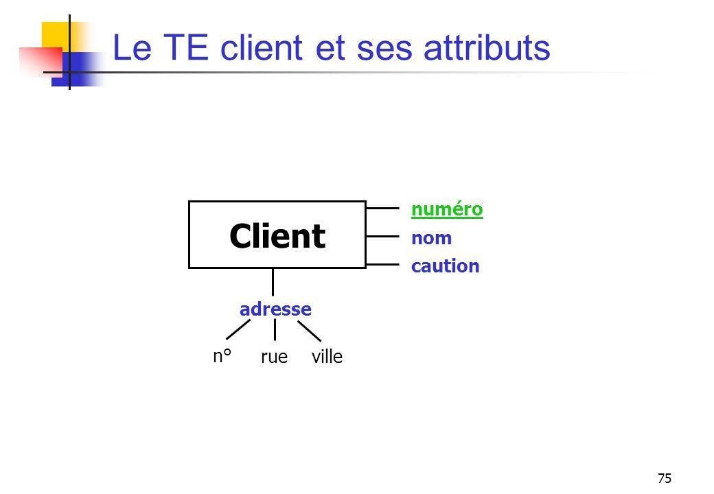 Le TE client et ses attributs