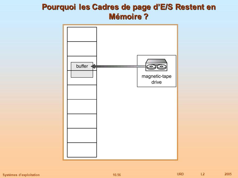 Pourquoi les Cadres de page d'E/S Restent en Mémoire