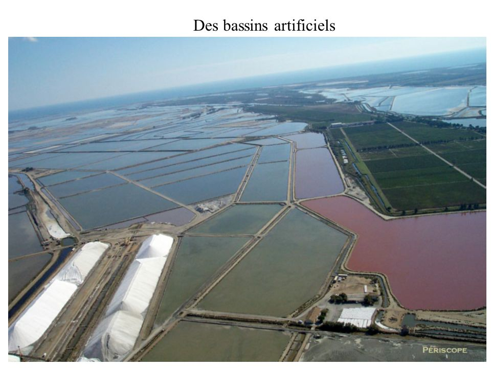 Des bassins artificiels