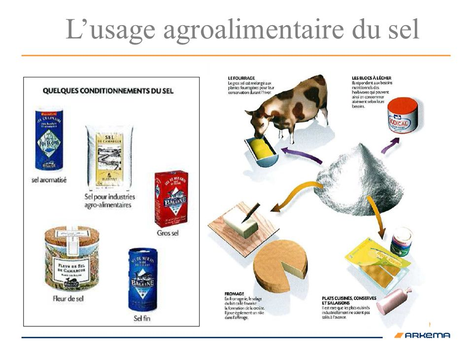 L'usage agroalimentaire du sel